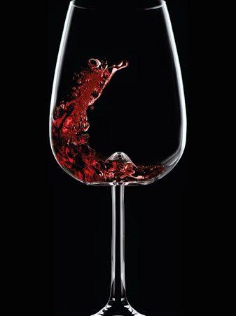 Vulcano Wine Tasting Glass